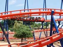 Busch Gardens in Tampa, Florida